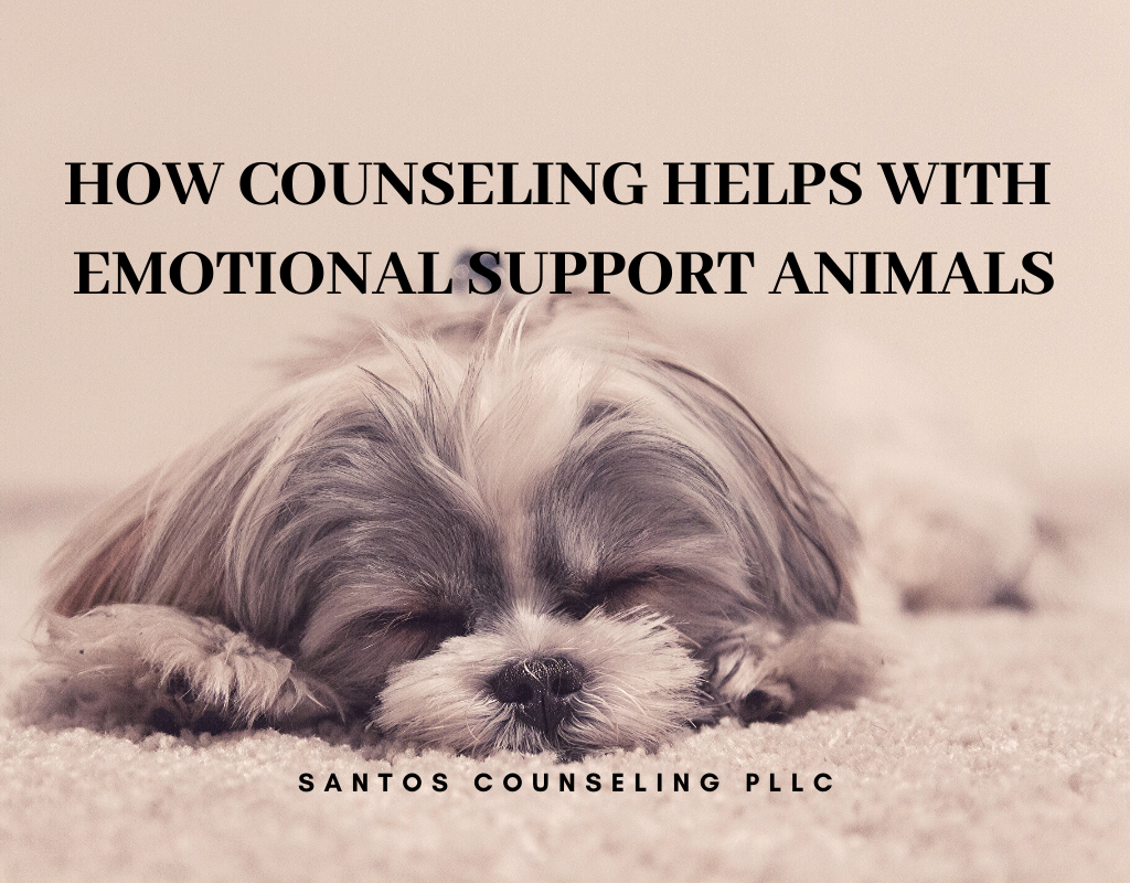How Counseling Can Help With Emotional Support Animal
